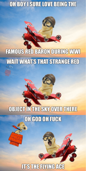Doge, God, and Love: OH BOYI SURE LOVE BEING THE  u/thelolmasterl!  FAMOUS RED BARON DURING WWI  WAIT WHAT'S THAT STRANGE RED  u/thelolmasteri!  OBIECT IN THE SKY OVER THERE  OH GOD OH FUCK  u/thelolmasterll  ITS THE FLYING ACE Doge format is cool, right guys?