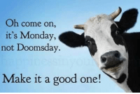 Its Monday: Oh come on  it's Monday,  not Doomsday  Make it a good one!