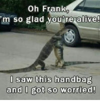 Alive, Memes, and Saw: Oh Frank  m so glad you'ne al  u re alive  l saw this handbag  and l got so worried!