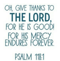 OH, GIVE THANKS TO  THE LORD  FOR HE IS GOODI  FOR HIS MERCY  ENDURES FOREVER.  PSALM 181 Happy Thanksgiving!!! Don't forget to thank the Lord!!! 🙏🙏🙏 give thanks Thanksgiving Lord good mercy endures forever He Him Jesus God bible biblequotes