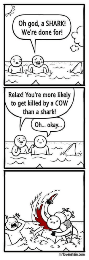 COWk: Oh god, a SHARK!  We're done for!  Relax! You're more likely  to get killed by a COW  than a shark!  Oh... okay...  mrlovenstein.com COWk
