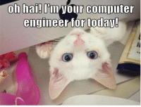 oh hai: oh hai! our computer  engineer for today!