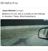 Peaceee ✌🏻: Oh hell to tf no  Jason Michael @Jeggit  Believe it or not, this is a shark on the freeway  in Houston, Texas. Peaceee ✌🏻