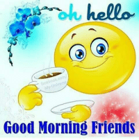 oh hello  Good Morning Friends Good morning