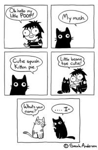 tastefullyoffensive:  by Sarah Andersen: Oh hello my  litle PooF!  MMv mush.  Cuthe squish.  Kitten Pie.  Litle beanie  toe cutie!  Whats your  name?  OSaahAndersen tastefullyoffensive:  by Sarah Andersen
