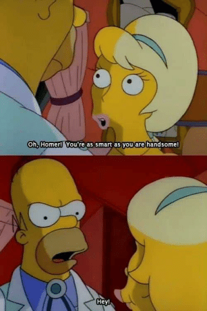meirl: Oh, Homer! You're as smart as you are handsome!  Heyl meirl