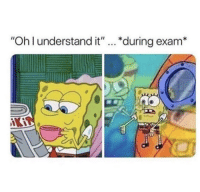 "MeIRL, Exam, and  Understand: ""Oh l understand it""... *during exam* meirl"