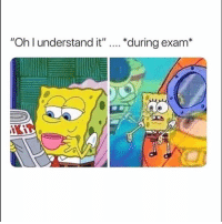 "Struggle, The Struggle Is Real, and Real: ""Oh l understand it""  ""during exam* The struggle is real.. 😩💯 https://t.co/S13L5uTlMf"