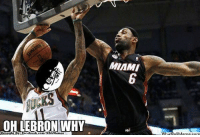 Fac, Meme, and Nba: OH LEBRON WHY  Brought Bye Fac  ebook.  com/NBAMennes  MIAMI  What Run-Down BLOCK by King James! Credit: Edu Gonçalves  http://whatdoumeme.com/meme/rm9vm3