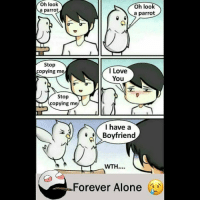 Being Alone, Be Like, and Love: Oh look  parrot  Oh look  a parrot  Stop  copying me  I Love  You  Stop  copying m  I have a  Boyfriend  WTH..  Forever Alone Twitter: BLB247 Snapchat : BELIKEBRO.COM belikebro sarcasm meme Follow @be.like.bro