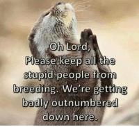 Stupid People Meme: Oh Lord  Please keep all the  stupid people from  breeding. We're getting  badly outnumbered  down here