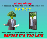 "<p>[<a href=""https://www.reddit.com/r/surrealmemes/comments/7lj8qo/b_r_o_c_c/"">Src</a>]</p>: oh me oh my  it appears my head has turned into one of the  BROCC  I must seek assistance from my brocc specialist  BEFORE IT'S TOO LATE <p>[<a href=""https://www.reddit.com/r/surrealmemes/comments/7lj8qo/b_r_o_c_c/"">Src</a>]</p>"