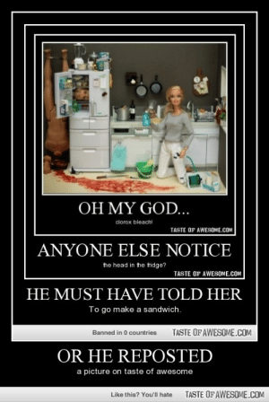 Or He Repostedhttp://omg-humor.tumblr.com: OH MY GOD...  clorox bleach!  TASTE OF AWESOME.COM  ANYONE ELSE NOTICE  the head in the fridge?  TASTE OF AWESOME.COM  HE MUST HAVE TOLD HER  To go make a sandwich.  TASTE OF AWESOME.COM  Banned in 0 countries  OR HE REPOSTED  a picture on taste of awesome  TASTE OF AWESOME.COM  Like this? You'll hate Or He Repostedhttp://omg-humor.tumblr.com