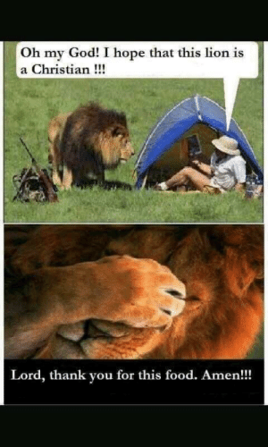 Food, God, and Oh My God: Oh my God! I hope that this lion is  a Christian!!!  Lord, thank you for this food. Amen!! Le epic funni