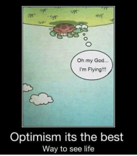 Memes, Oh My God, and Optimism: Oh my God  I'm Flying!  Optimism its the best  Way to see life