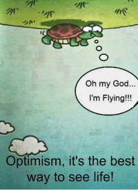 Memes, Oh My God, and Optimism: Oh my God.  I'm Flying!!!  Optimism, it's the best  way to see life!
