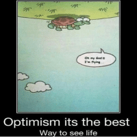 Memes, Oh My God, and Goodvibes: Oh my God  I'm flying.  Optimism its the best  Way to see life TheGoodQuote GoodVibes QuotesToLiveBy