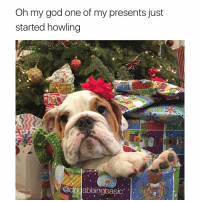 A-fricken-men @memes: Oh my god one of my presents just  started howling  Odogsbeingbasic A-fricken-men @memes