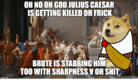 Doge, Frick, and God: OH NO OH GOD JULIUS CAESAR  ISGETTING KILLED OH FRICK  BRUTE IS STABBING HIM  TOO WITH SHARPNESS VOH SHIT