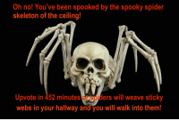 NSFW King Of The Hill memes: Oh no! You've been spooked by the spooky spider  skeleton of the ceiling!  Upvote in 452 minutes  Ospiders will weave sticky  webs in your hallway and you will walk into them! NSFW King Of The Hill memes