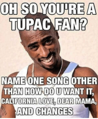Love, Memes, and California: OH SO OUDRE A  TUPAC FAN?  NAME ONE SONG OTHER  THAN HOWSIDO U WANT IT  CALIFORNIA LOVE DEAR MAMA  AND CHANGES