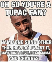 Love, Memes, and California: OH SO YOU RE A  TUPAC FAN?  NAME ONE SONG OTHER  THAN HOWOOU WANT IT  CALIFORNIA LOVE DEAR MAMA  AND CHANGES Dopefiend's Diner