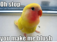 Oh Stop: Oh stop  you make me blush