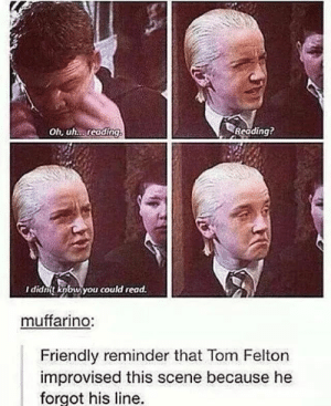 Wait you can read??: Oh, uh. reading  Reading?  I didnt knbw you could read.  muffarino:  Friendly reminder that Tom Felton  improvised this scene because he  forgot his line. Wait you can read??