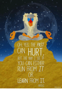 rafiki: OH, YES, THE PAST  CAN HURT  BUT THE WAY I SEE IT  YOU CAN EITHER  RUN FROM IT  OR  LEARN FROM I  RAFIKI  REDTAL DESIGN