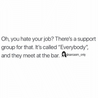 """Funny, Memes, and Job: Oh, you hate your job? There's a support  group for that. It's called """"Everybody"""".  and they meet at the bar. srasm oy SarcasmOnly"""