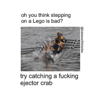 rowing crab ejectorcrab crew row scull sculling quad: oh you think stepping  on a Lego is bad?  try catching a fucking  ejector crab rowing crab ejectorcrab crew row scull sculling quad