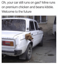 Future, Memes, and Chicken: Oh, your car still runs on gas? Mine runs  on premium chicken and beans kibble.  Welcome to the future  almo Follow @betasalmon for more engineering marvels