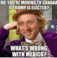 Memes, American, and Canada: OH, YOU'RE MOVING TO CANADA  IF TRUMPIS ELECTED?  WHAT SWRONG  WITH MEXICO? I'm still waiting for all of the celebrities to move who said they would😂😂😂 trump Trump2020 presidentdonaldtrump followforfollowback guncontrol trumptrain triggered ------------------ FOLLOW👉🏼 @conservative.american 👈🏼 FOR MORE🇺🇸🇺🇸