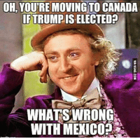 Memes, Canada, and Mexico: OH, YOURE MOVING TO CANADA  IFTRUMPISELECTED  WHATS WRONG  WITH MEXICO
