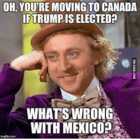 Memes, Canada, and Mexico: OH, YOUREMOVING TO CANADA  IFTRUMPIS ELECTED  WHATS WRONG  WITH MExICO?  imgflip.com