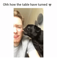 Funny, How, and Table: Ohh how the table have turned Wooow thats soo messed up😂💀