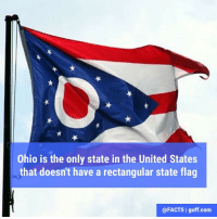 Instead, The Ohio Burgee has a swallowtail shape, which is typically used for maritime flags.: Ohio is the only state in the United States  that doesn't have a rectangular state flag  @FACTS I guff com Instead, The Ohio Burgee has a swallowtail shape, which is typically used for maritime flags.