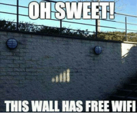 Memes, Free, and 🤖: OHISWEET  THIS WALL HAS FREE WIF