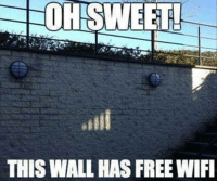 Memes, Free, and Wifi: OHISWEET  THIS WALL HAS FREE WIFI