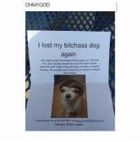 Bitch, Fake, and Lol: OHM YGOD  lost my bitchass dog  again  He's ugly as fuck and keeps running away but I still love  him, plus I already bought him shit and l don't wanna  return the stuff. Please bring him back, his name is Senior  Woofers. He probably won't respond to it cus he's a fake lil  bitch though  Please contact me at 661-440-5950 or  booteyeater6989@gmail.com  Reward: $5ish maybe Lol😂