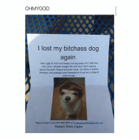 Bitch, Fake, and Funny: OHMYGOD  lost my bitchass dog  again  He's ugly as fuck and keeps running away but I still love  him, plus l already bought him shit and l don't wanna  return the stuff. Please bring him back, his name is Senior  Woofers. He probably won't respond to it cus he's a fake lil  bitch though  Please contact me at 661-440-5950 or  booteyeater6969@gmailicom  Reward: $5ish maybe This is so funny
