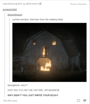Fire, SpongeBob, and The Walking Dead: ohyeahspongebobglitterw  Source: tinysteve  eave  someactorkid  current emotion: that barn from the walking dead  Spongebob, why??  WHY DID YOU SET ME ON FIRE, SPONGEBOB  WHY DIDN'T YOU JUST WRITE YOUR ESSAY  169,189 notes STOP WASTING TIME