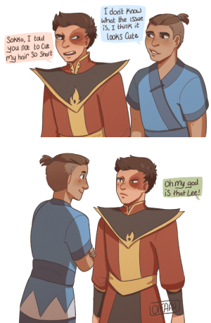 oifaaa:  Have I mentioned I adore short hair Zuko and just Sokka in general : oifaaa:  Have I mentioned I adore short hair Zuko and just Sokka in general