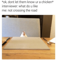 Do U Like Me: *ok, dont let them know ur a chicken*  interviewer: what do u like  me: not crossing the road