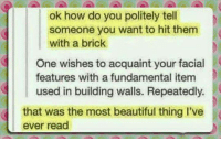 #CFPics #funny: ok how do you politely tell  someone you want to hit them  with a brick  One wishes to acquaint your facial  features with a fundamental item  used in building walls. Repeatedly.  that was the most beautiful thing I've  ever read #CFPics #funny