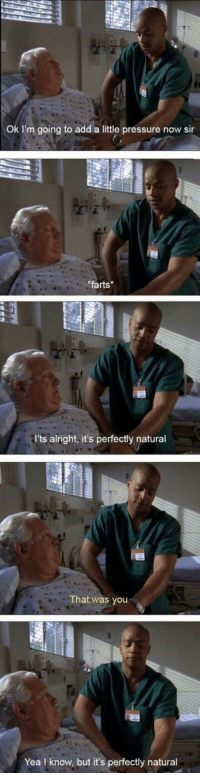 """Meme, Pressure, and Tumblr: Ok I'm going to add a little pressure now sir  farts  I'ts alright, it's perfectly natural  That was you  Yea I know, but it's perfectly natural <p>This is the greatest show. Hands down.<br/><a href=""""http://daily-meme.tumblr.com""""><span style=""""color: #0000cd;""""><a href=""""http://daily-meme.tumblr.com/"""">http://daily-meme.tumblr.com/</a></span></a></p>"""