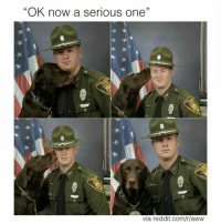 "Sent in by @american_cops CopHumor CopHumorLife Humor Funny Comedy Lol Police PoliceOfficer ThinBlueLine Cop Cops LawEnforcement LawEnforcementOfficer Work Pose K9Unit K9Officer DogsOfInstagram: ""OK now a serious one'  via reddit.com/r/aww Sent in by @american_cops CopHumor CopHumorLife Humor Funny Comedy Lol Police PoliceOfficer ThinBlueLine Cop Cops LawEnforcement LawEnforcementOfficer Work Pose K9Unit K9Officer DogsOfInstagram"