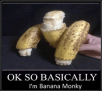 Banana: OK SO BASICALLY  I'm Banana Monky