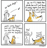 Memes, Good, and 🤖: ok. So if I fetch the  stick,he will just throw  it away again and this  Stupid loop will continue  I will inore.  dog  wrona doggo?  uhots  Dont you n to fetch?  You dont like playin  Yay!  wth we anumore?  Fne,you  nsecu  P*eleh».  re.  seebangnow Good guy doggo @xibang