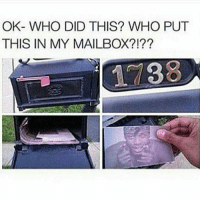 Tag someone who would do this 😂😂: OK- WHO DID THIS? WHO PUT  THIS IN MY MAILBOX?! Tag someone who would do this 😂😂